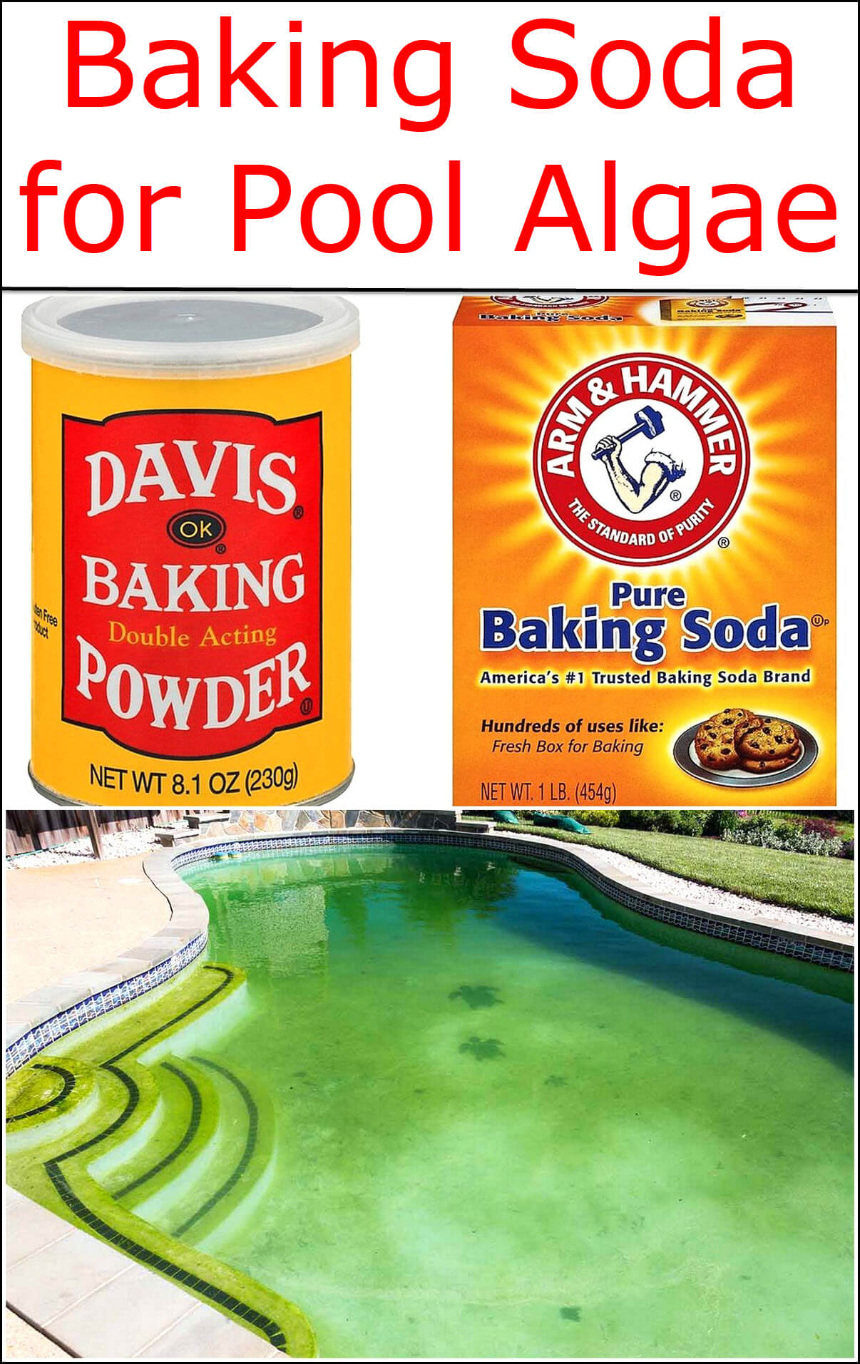 baking soda for pool algae baking soda uses and diy home remedies. Black Bedroom Furniture Sets. Home Design Ideas